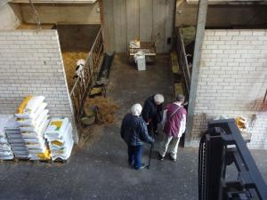 20170909 057 Made- Wagenbergsestraat- Bezoek aan kaasboerderij 't Bosch
